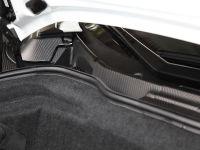 Capristo Lamborghini Aventador Carbon, 15 of 17