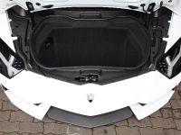 Capristo Lamborghini Aventador Carbon, 16 of 17