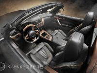 Carlex Design BMW Z4 E89, 2 of 7