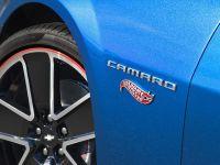 Chevrolet Camaro Hot Wheels Special Edition , 14 of 14