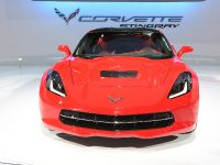 Chevrolet Corvette Stingray Chicago 2013, 1 of 5