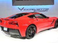 Chevrolet Corvette Stingray Chicago 2013