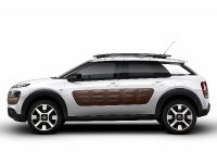 Citroen C4 Cactus, 1 of 27