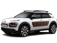 Citroen C4 Cactus, 2 of 27