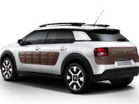 Citroen C4 Cactus, 3 of 27