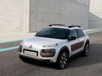 Citroen C4 Cactus, 8 of 27