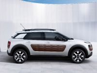 Citroen C4 Cactus, 9 of 27
