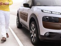 Citroen C4 Cactus, 14 of 27