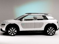 Citroen Cactus Concept, 3 of 32