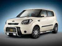 Kia Soul with Cobra front guard, rocker panel guards with integrated steps and Mauris 8Jx19 wheels