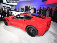 Corvette Stingray Detroit 2013, 2 of 12