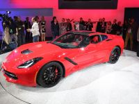 Corvette Stingray Detroit 2013, 3 of 12