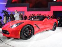 Corvette Stingray Detroit 2013, 4 of 12