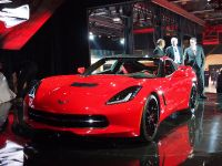Corvette Stingray Detroit 2013, 9 of 12