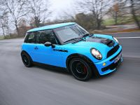 thumbnail image of CoverEFX Mini Cooper