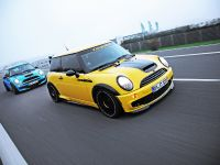 CoverEFX Mini Cooper, 9 of 10