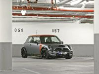 CoverEFX MINI R53 Project One, 2 of 12