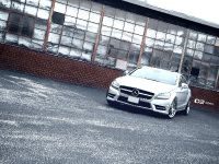 thumbnail image of D2Forged Mercedes Benz CLS-550 FMS-05