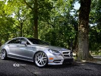 D2Forged Mercedes-Benz CLS-550 FMS08, 2 of 13