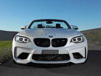 Dahler Design BMW M2, 1 of 20