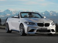 Dahler Design BMW M2, 2 of 20