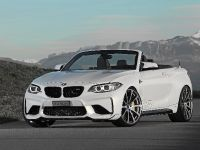 Dahler Design BMW M2, 3 of 20