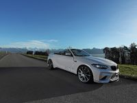 Dahler Design BMW M2, 5 of 20