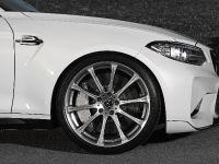 Dahler Design BMW M2, 12 of 20