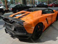 DMC Lamborghini Aventador LP700-4 Roadster SV, 4 of 8