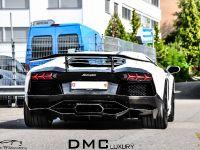 DMC Lamborghini Aventador LP900 SV Spezial Version , 9 of 17