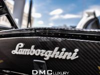 DMC Lamborghini Aventador LP900 SV Spezial Version , 15 of 17