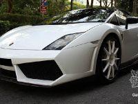 thumbnail image of DMC Lamborghini Gallardo Toro