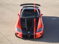 Dodge Viper SRT10 ACR 2008, 13 of 23