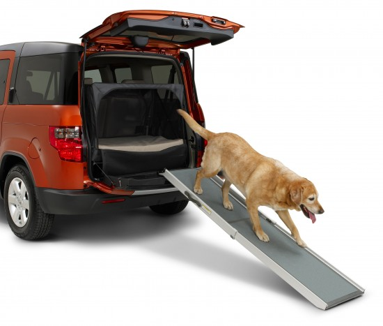 Dog Friendly Honda Element Concept