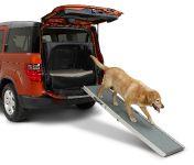 Dog Friendly Honda Element, 9 of 16
