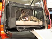 Dog Friendly Honda Element, 3 of 16