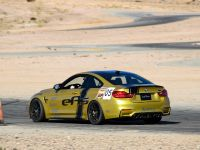 EAS KW Clubsport BMW M4, 5 of 11