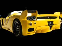 edo competition Ferrari Enzo XX Evolution, 8 of 24