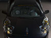 edo competition Lamborghini LP710 Audigier, 4 of 20
