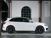 ENCO Exclusive Audi Q5, 5 of 11