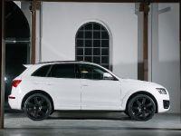 ENCO Exclusive Audi Q5, 5 of 11
