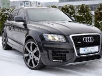 ENCO Exclusive Audi Q5, 11 of 11