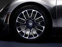 Ettore Bugatti Veyron , 12 of 14