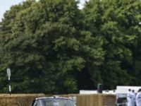 Ferrari 2014 Goodwood Festival of Speed, 18 of 27