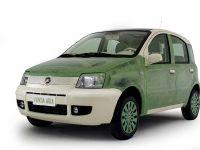 thumbnail image of Fiat Panda Aria Concept
