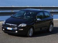 Fiat Punto Evo, 27 of 37