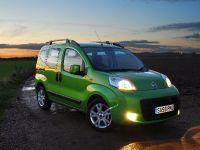 Fiat Qubo, 39 of 40