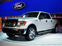 Ford F150 Pick Up Detroit 2008