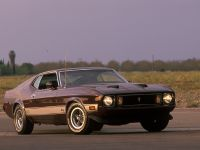Ford Mustang 1973, 3 of 3
