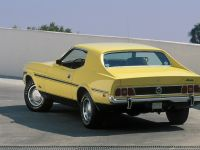 Ford Mustang 1973, 2 of 3